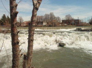 More of the falls.
